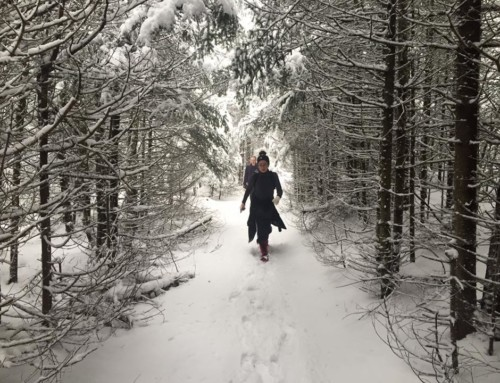 A Catskills Winter Escape at Spillian!